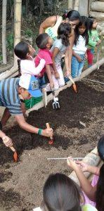 Proyecto ambiental huerta comunitaria comunidad NASA